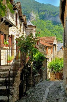 Gorges du tarn ~ France
