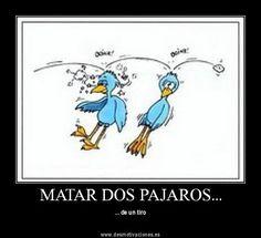 Matar dos pájaros de un tiro #Traditional Spanish sayings #refranes