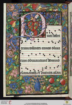 Cod. Sal. VIII,16: Cod. Sal. VIII,16 Processionale (Frankreich/ Burgund, 16. Jh.) Medieval Music, Renaissance Music, Medieval Art, Illuminated Letters, Illuminated Manuscript, Mondrian Art, Alchemy Art, Illumination Art, Beautiful Lettering