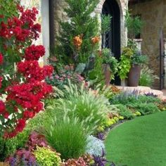Tuscan House Landscaping With Palm Trees : Front Yard House ...