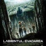 The Maze Runner 2014 HD   Labirintul: Evadarea