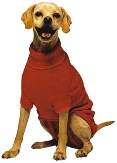 Fashion Pet Classic Cable Dog Sweater, Red, Large - http://www.thepuppy.org/fashion-pet-classic-cable-dog-sweater-red-large/