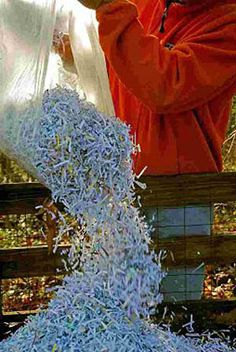 Compost Junk Mail - Use Shredder