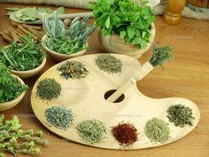 ervas aromaticas - Pesquisa Google