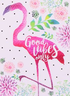 Flamingo Good Vibes Only Flamingo Wallpaper, Flamingo Art, Pink Flamingos, Iphone Wallpaper, Coloring Pictures Of Animals, Animal Pictures, Flamingo Pictures, Girl Sign, Good Vibes Only
