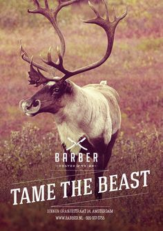Barber Shaves & Trims - Tame the beast, Bear, Reindeer and Bison http://www.usebristol.com.br