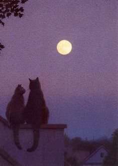 "felixinclusis: ""viking-balu: I don't really like cats. But I love this. Art by Quint Buchholz. """