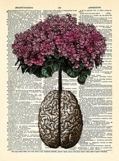 Brain Human Anatomy Flowers Dictionary Art Print by PrintsVariete