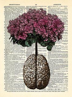 Brain Human Anatomy Flowers Dictionary Art Print, Anatomical Brain, Anatomy Brain Poster, Vintage Human Brain Wall Decor, Gift for Man 029 - Mi educacion - Vintage Flower Tattoo, Vintage Flowers, Tattoo Vintage, Brain Poster, Brain Art, Brain Drawing, Anatomy Drawing, Brain Painting, Drawing Faces