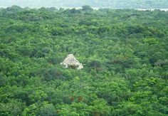 View from the top of El Castillo of Coba...so beautiful.