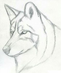 Easy Pencil Drawings Step By Step Wolf Learn How To Draw A Wolf Head, Mexican Wolf, Forest Animals Easy Pencil Drawings, Pencil Art, Cool Drawings, Easy Animal Drawings, Pencil Drawing Tutorials, Animal Sketches, Drawing Sketches, Sketching, Drawing Ideas
