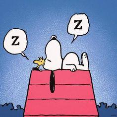Sleepy snoopy & sleepy Woodstock