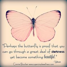"139 Likes, 6 Comments - Connie Boucher (@connieboucher) on Instagram: """"Perhaps the ‪#‎butterfly‬ is proof that you can go through a great deal of #darkness yet become…"""