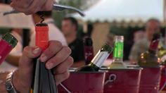 Guara Somontano: Arte Rupestre, de tapas y vinos, Ultra Trail, rutas a c...