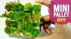 DIY 🌱 Mini Pallet com suculentas - SIMPLICHIQUE