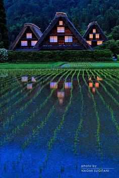 Shirakawa, Gifu, Japan - by Naomi Sugitani Gifu, Places Around The World, Around The Worlds, Beautiful World, Beautiful Places, Foto Nature, Japanese Landscape, Visit Japan, Photos Voyages