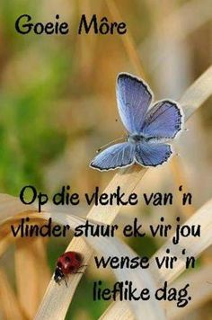Good Night Blessings, Good Morning Wishes, Happy Quotes, Best Quotes, 16th Birthday Wishes, Afrikaanse Quotes, Goeie Nag, Goeie More, Special Quotes