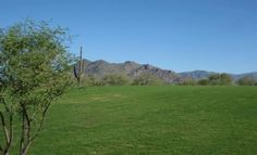 A vista from the Lone Mountain Community Park