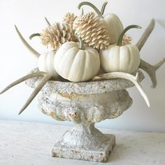 """2,616 Likes, 191 Comments - TONE ON TONE (@loithai) on Instagram: """"Keeping it light and bright for fall! White pumpkins, bleached pine cones and antlers in an old…"""""""