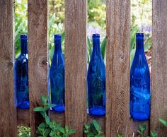blue bottles on a fence photographed by Daniel Hurst Photography