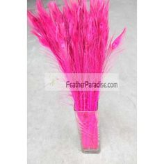 """Bleached and Dyed Hot Pink Peacock Eye Feathers 40-45"""" 12 Pieces Wholesale dozens bulks wedding Centerpieces Crafts arts DIY Events and Stage Performance Decorations"""