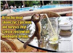Niedopite drinki :) - śmieszne obrazki i fotki na Podpiszobrazek.pl