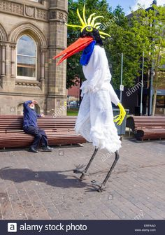 1000 Images About Bird Costume On Pinterest Bird