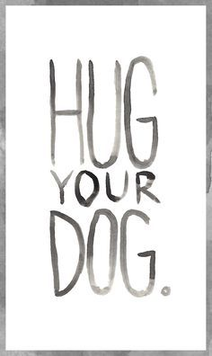 Corgis give the best hugs! Even though their little legs can't reach very far around... :)