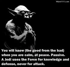 Good God Better Life Wisdom In Star Wars Than Reality! Yoda Quotes, Movie Quotes, Life Quotes, Star Wars Quotes, Star Wars Jedi, Verse, Thought Provoking, Life Lessons, Decir No
