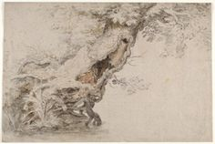 Hollow Tree, after Roelant Savery By Lambert Doomer, Roelant Savery ,Circa 1670