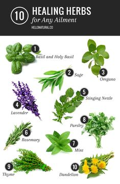 A healing herbs list of our favorite remedies for what ails you - you may already be growing these in your backyard!