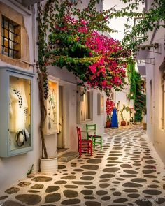 Alley of Paros island, Cyclades Beautiful Landscapes, Beautiful Gardens, Places Around The World, Around The Worlds, Balcony Plants, Beautiful Streets, Beautiful Places To Travel, Travel Aesthetic, Santorini