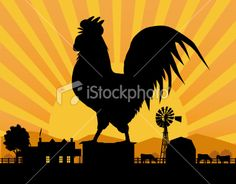 Crowing Rooster in Farmyard Royalty Free Stock Vector Art Illustration Chicken Vector, Black Rooster, Chickens And Roosters, Hobby Farms, Farm Yard, Free Vector Art, Country Life, Good Morning, Sunrise