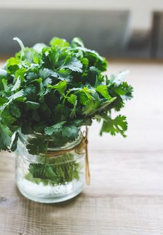 Love it or hate it, here is a great tip on how to store fresh cilantro. It will last up to 2 weeks.