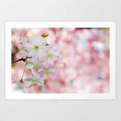 finest spring time Art Print by hannes cmarits (hannes61) - $17.00