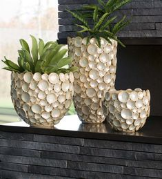 Completely captivating the dimensional beauty is brought to life in these striking coastal look ceramic vases. The opalescent finish with gold accents mak… Seashell Art, Seashell Crafts, Beach Crafts, Diy Home Crafts, Diy Home Decor, Diy Flowers, Flower Pots, Creation Deco, Coastal Decor