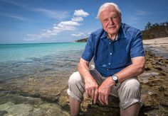 Sir David Attenborough at 90: A timeline of his outstanding career in television -                       (Picture: EPA)    UK national treasure and worldwide legend Sir David Attenborough is celebrating his 90th birthday this week. S...
