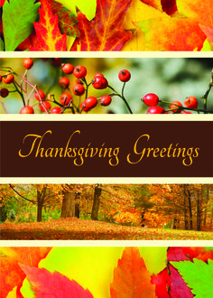 81 best thanksgiving images on pinterest holiday cards autumn four colorful panels depicting images of the autumn season with a center panel that holds the message thanksgiving greetings m4hsunfo