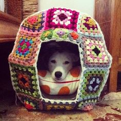 "I just had to post this here. That pup looks really happy with the Granny Square ""house."" Love this. :-)"
