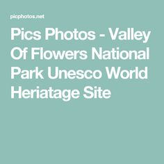 Pics Photos - Valley Of Flowers National Park Unesco World Heriatage Site