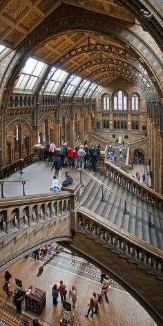 Hintze Hall at the Natural History Museum in London The architecture alone is a reason to go to London someday.