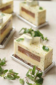 Gateau Aromatique. Mint and chocolate/white chocolate cake, ]