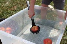 Apple Bobbing Activity for Preschoolers