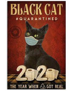 Crazy Cat Lady, Crazy Cats, Gatos Cool, Cat Posters, Cat Decor, Cat Quotes, Cat Drawing, Cat Memes, Cool Cats
