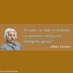 Star Of The Week, Smart Quotes, Totally Me, Albert Einstein, Famous Quotes, Good Vibes, Life Lessons, Texts, Life Hacks