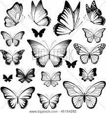 vectores mariposas - Buscar con Google