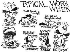 Funny quotes about monday at work funny typical work week funny monday workout quotes . Monday Quotes, Its Friday Quotes, Work Quotes, Friday Humor, Motivation Quotes, Daily Quotes, Life Quotes, Funny Cartoon Pictures, Funny Dog Photos