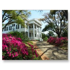 It's a beautiful, Spring day at Stanton Hall in Natchez, Mississippi. This historic antebellum home offers tours through the Natchez Pilgrimage Club. Natchez contains one of the highest concentration of historic homes of any place in America.