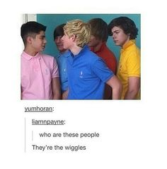 XD Some like 1D, some like 5SOS, some like many other bands of which I'm honestly not sure are cool, but some like the wiggles, and I am a part of that group.