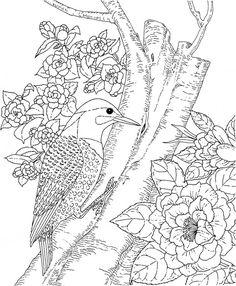 marjorie sarnat coloring pages - Pesquisa Google